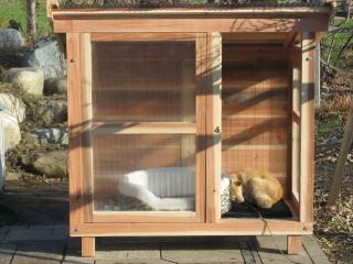 犬が入りやすい犬小屋製作風景