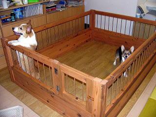 ○○様からの犬小屋設置写真1