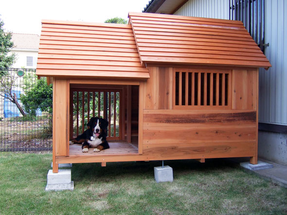 Cat House further Rad Homes Built Secret Passageways moreover Climb A Tree Rustic Luxury Cat Climber Realistic Stylish Cat also Bn 2309955 in addition Diy Plywood Cat Castle. on indoor cat house plans